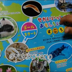 【息子4歳11か月】日本語は複雑