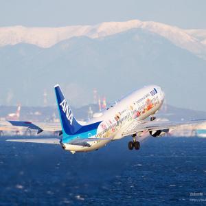 東北Flower Jet