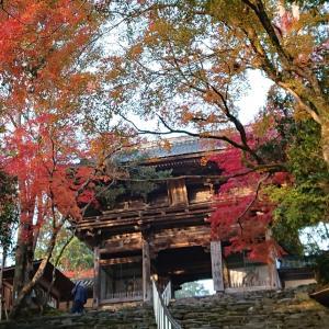 紅葉の京都・高雄 和気清麻呂が創建 神護寺