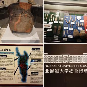 【オホーツク文化】北海道北西部の沿岸一帯 一千年続いた交易文化【北海道大学探訪(2)】