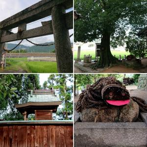 【野口神社】赤い口をあけた大蛇が見つめる境内【御所市蛇穴】