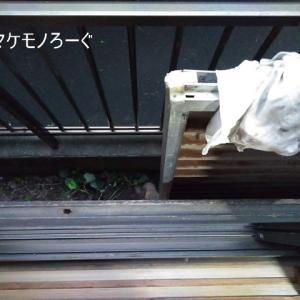台風19号に思うこと(まとまらない雑感)