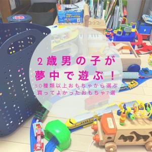 2歳男の子が夢中で遊ぶ!買ってよかったおもちゃ7選