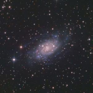 3万円の望遠鏡で撮った銀河たち NGC2403