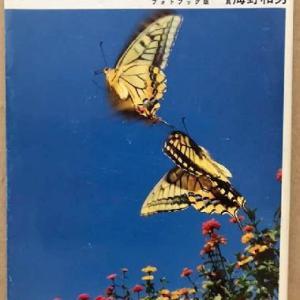日高敏隆『チョウはなぜ飛ぶか』朝日出版社