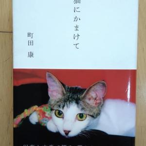 町田康『猫にかまけて』(講談社)