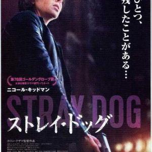 カリン・クサマ「ストレイ・ドッグ」Cinema・Kobe