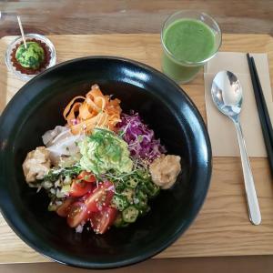 ヴィーガン飯に挑戦中!3日目は宜野湾市「plant-HOLIC」野菜もお米も自然栽培!