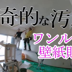 【壁紙クロス動画】猟奇的な汚れ ワンルーム壁紙張替