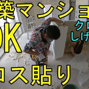 【新築マンション】LDKクロス貼り動画