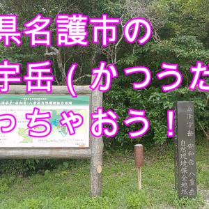 【沖縄】名護市の嘉津宇岳(かつうだけ)登山してみたが・・・