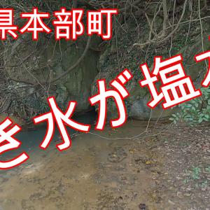 【沖縄パワースポット】塩川(スガー)世界に2か所しかない湧き水が塩水???