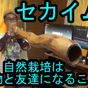 【セカイムラ】自然栽培は微生物と友達になるんやでっ!