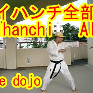 【 KARATE】Naihanchi ALL ナイハンチ全部