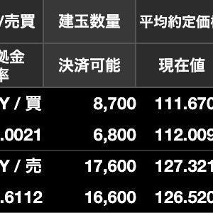 FX両建ては「ドル円買いとユーロ円売り戦法」の方がおすすめできる。