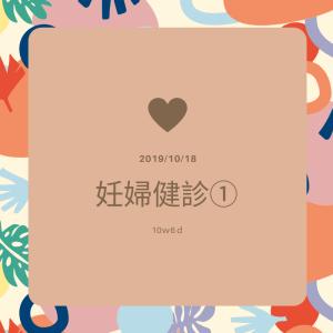 【第6回凍結胚移植】10w6d妊婦健診①