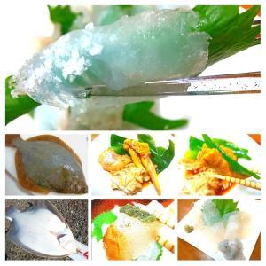 【.:*'° one cuisine :'】美味❗️明石産マコガレイ造り系色々