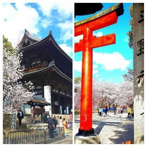 【ブラぴっち-街角探索-】車窓からプチ京都旅