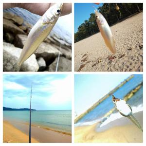 【It can?fishing on the beach】海水浴禁止続出で色々深読み
