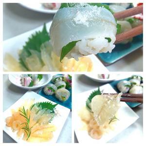 【.:*'° un cuisine :'】シロギス 手毬寿司と昆布締め
