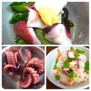 【.:*'° un cuisine :'】明石蛸 料理色々