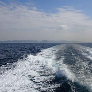 海洋汚染とデトックス(1)