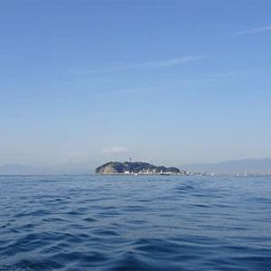 海洋汚染とデトックス(2)
