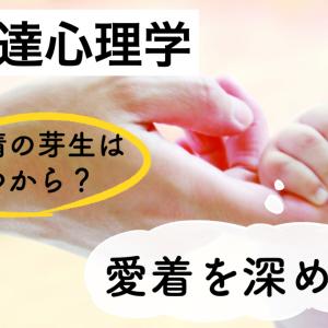 発達心理学〜赤ちゃん〜