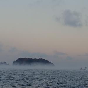 南房総館山沖&内房保田沖のマダイ釣り~マイボートでマダイに挑戦。大苦戦の末の釣果。