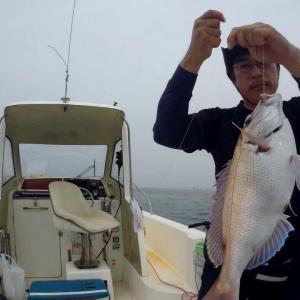 マイボートで内房保田沖のマダイ釣り~潮流れず激渋