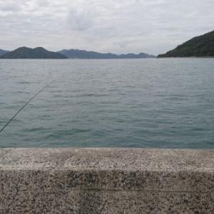 (ウマズラ)ハゲに魅せられて ~実釣物語~