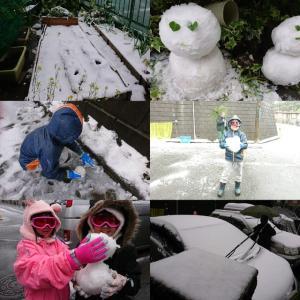 子供は雪の子(^^ゞ