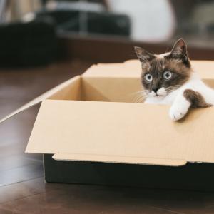Amazonへの納品方法