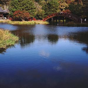 ● 横浜 称名寺~2 -2020年11月