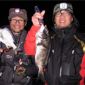 乗っ込みクロダイを求め名古屋港へ 仕立船『太平丸Ⅱ』で鯛ブラー釣行