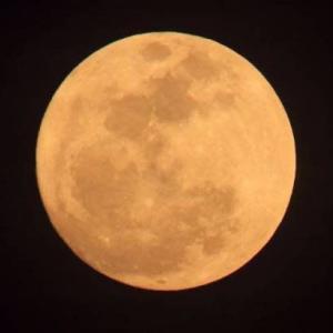 今書いている詩(1412)「満月」