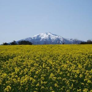 津軽の春3