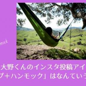 嵐・大野くんのインスタ投稿アイテム「タープ+ハンモック」はなんていう商品?