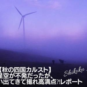 【秋の四国カルスト】星空が不発だったが、牛がいっぱい出てきて撮れ高満点⁈レポート