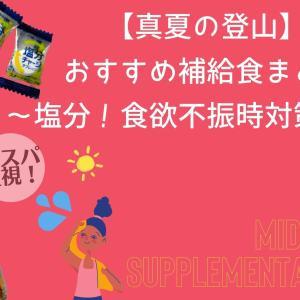 【真夏の登山】おすすめ補給食5選〜とにかく塩分!食欲不振時対策にも〜