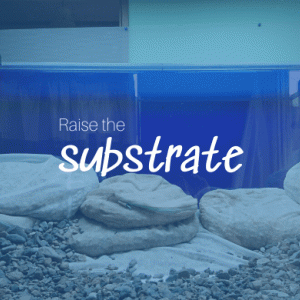 How to raise the substrate using pumice