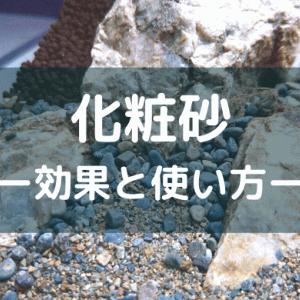 【前景を砂で演出】化粧砂の効果と使い方 ーソイルとの敷き分け方も詳しく解説ー