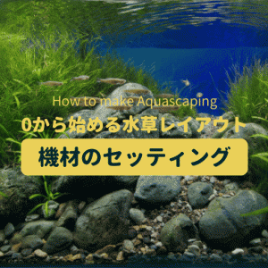 水草レイアウトの第一歩 機材のセッティング