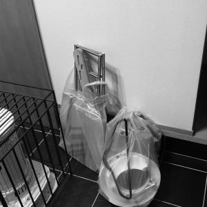 ゴミを捨てる捨てる〜