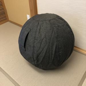 【発達障害】バランスボールは良いおもちゃ