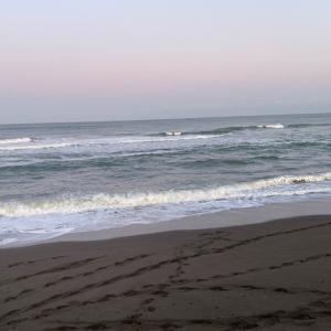 日本海荒れ模様…(´・ ・`)