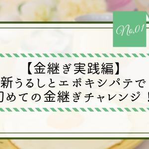 【金継ぎ実践編】新うるしとエポキシパテで初めての金継ぎチャレンジ!