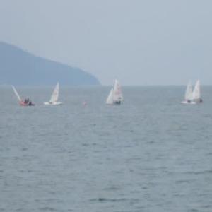 博多湾のヨット
