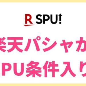 楽天パシャがSPU条件入り!まとめ買いする月を狙って達成しよう【2019年版】RakutenPasha
