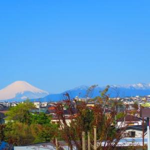 お買い物散歩 富士山 化粧直し